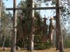 deer-camp-20154