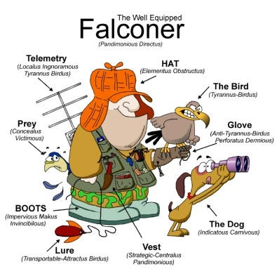 falconer_cartoon