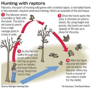 Hunting Diagram