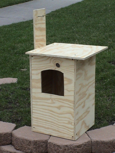 owl_house2