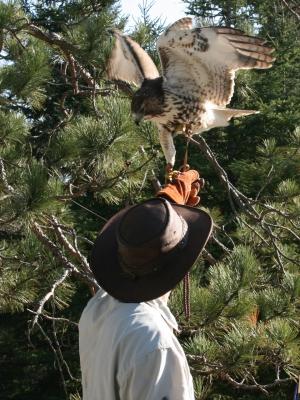 Falconer and Tahoe at Deer Camp 02