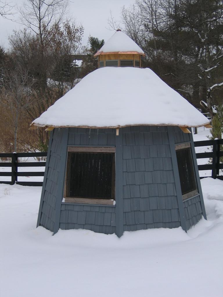 mews_winter