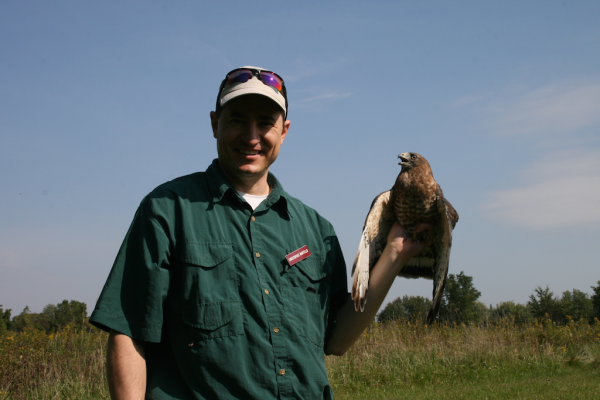 Chris Holding Broad-winged Hawk