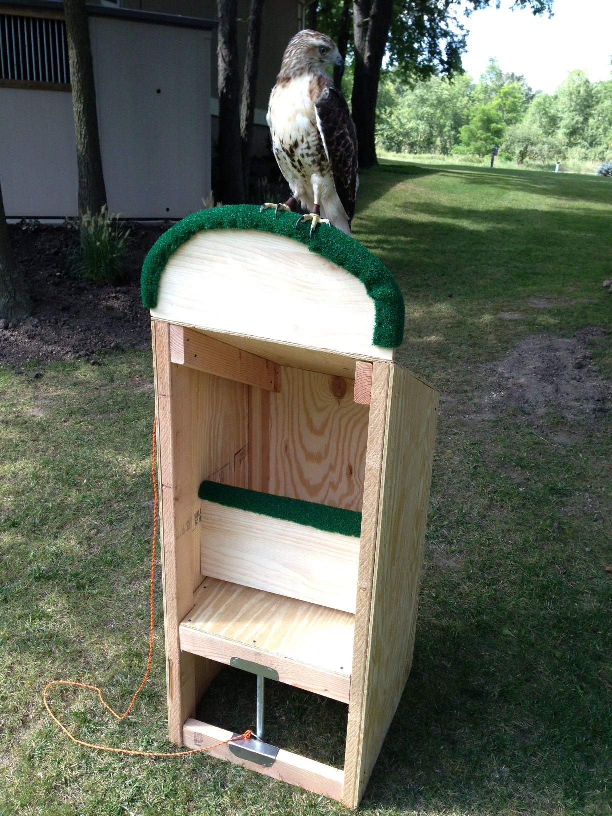 Outdoor Hawk Perch Box