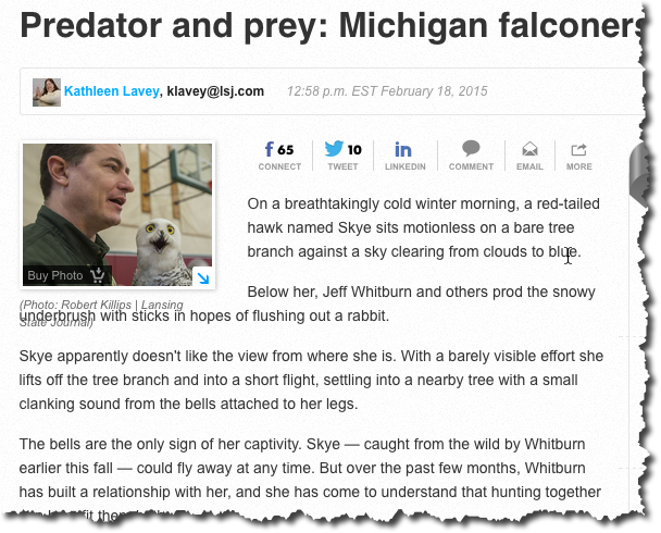 Michigan Falconry in the Lansing State Journal
